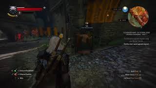 The Witcher 3: Wild Hunt_20170915184057