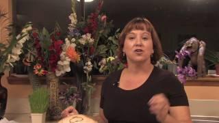 Gardening Tips & Tricks : How to Grow a Sweet Potato Plant
