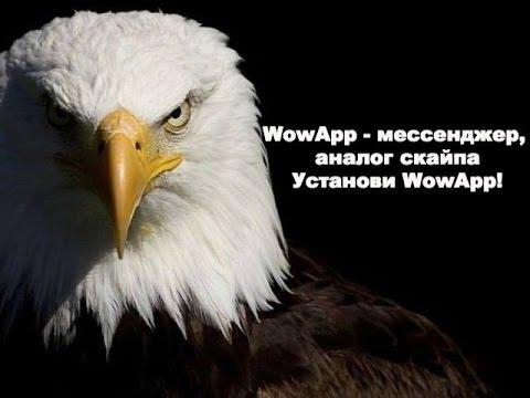WowApp - новый мессенджер, аналог скайпа