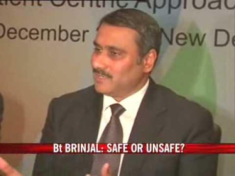 Is BT brinjal safe?