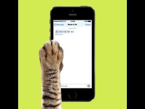 Tech tricks: self-destructing messages
