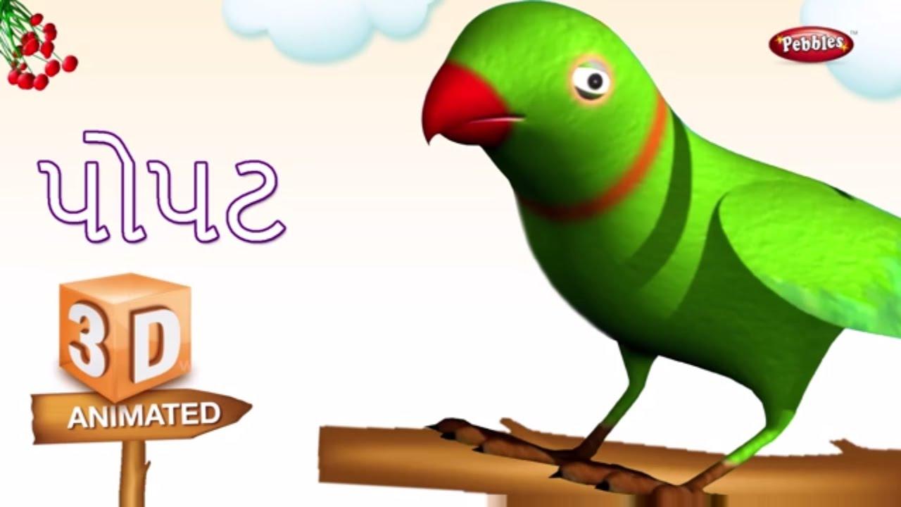 10 birds information in gujarati