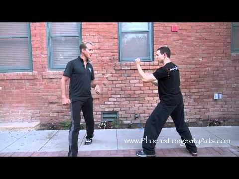 Kung Fu:  Real Techniques - Lesson 2