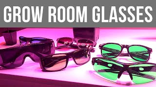 Grow room glasses - Which ones, and why?