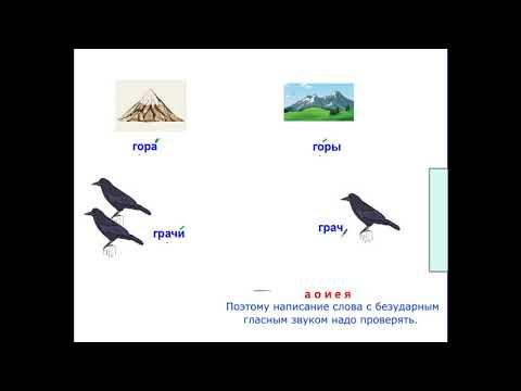 Ударные и безударные гласные. Видеоурок, русский язык, 1 класс.