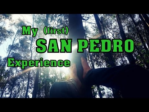 MY SAN PEDRO EXPERIENCE (Peru) - What I Learned From The Nature