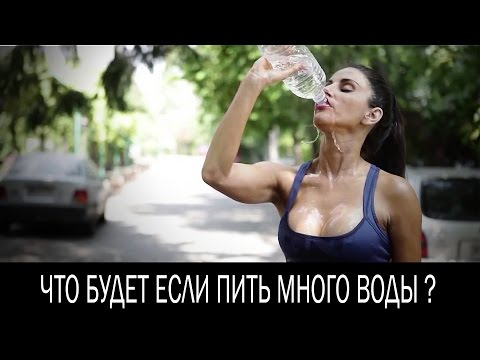 Алкоголь: куда тебя приведет привычка выпивать каждый день
