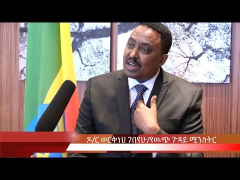 Interview With Dr Workneh Gebeyehu Foreign Affairs Minister