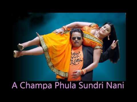 A Champa Phula Sundri Nani Odia hit Dance DB Mix By DJ Ashik