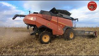 2018 Corn Harvest in Illinois with a new Versatile RT520 Combine