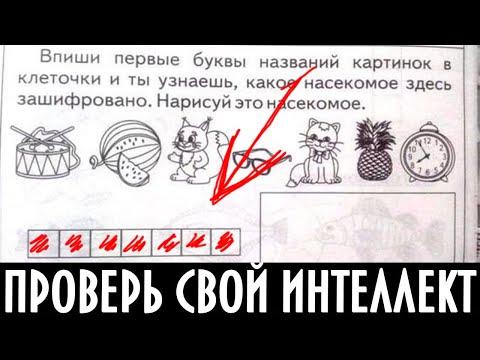 Клуб Винкс Русский