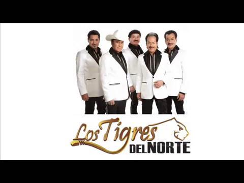 Los Tigres Del Norte - Ni parientes somos (Letra)