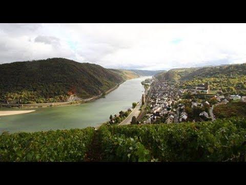 Erlesenes am Rhein - Expedition in die Heimat | SWR Fernsehen