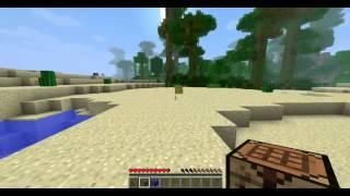 Minecraft BONUS #1 - Panarama Totala