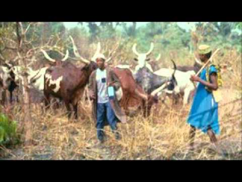 2 People Killed As Fulani People Steal Their 50 Cows