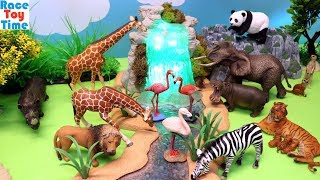 Learn Wild Zoo Animals
