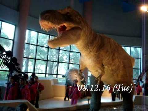 Taichung - National Museum of Natural Science