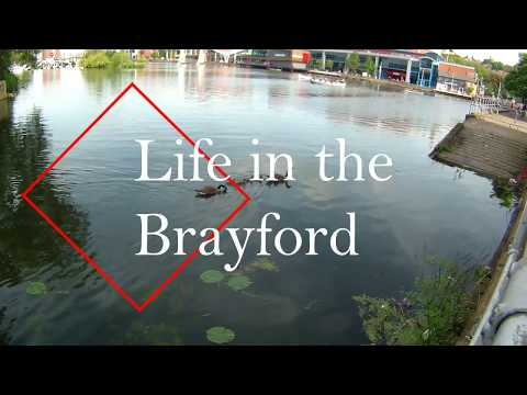 Life In The Brayford