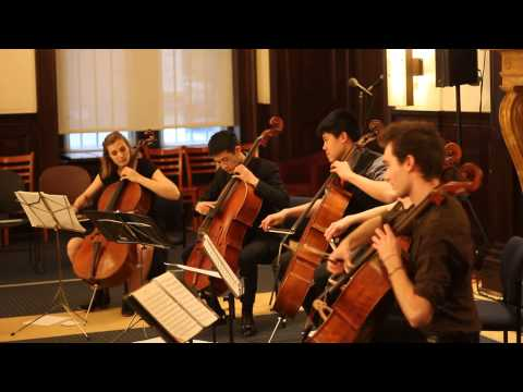 [Live] Titanium by David Guetta for 5 Cellos - String Theory