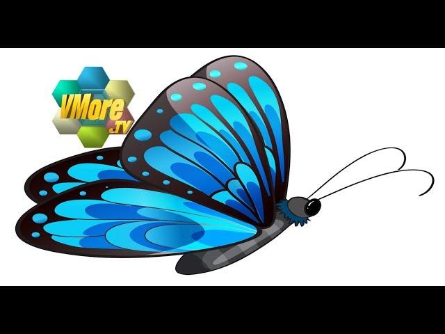 VMore - BlueButterfly 藍蝶會館 音樂坊