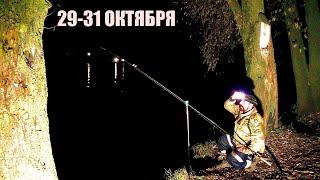 Рыбалка Ловля Хищника на Живца Донки Резинки Двое Суток на реке с Больничкой
