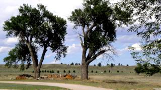 USA-2012-13-Fort Laramy-NM