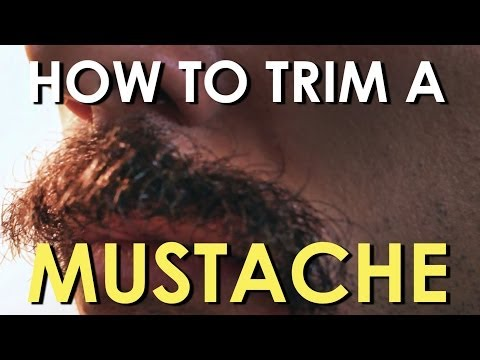 Aaron Zytle - Mustaches Help Guard Against Sun's Rays, Prevent Lip Cancer