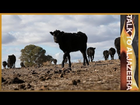 In the grip of drought: Should Australia's farmers be subsidised? | Talk To Al Jazeera In The Field