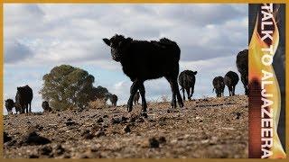 In the grip of drought: Should Australia's farmers be subsidised? | Talk To Al Jazeera In The Field