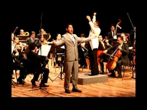 clip Ars Vocalis 2012.mpg
