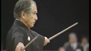 Musashi's Niten Ichi-ryu - Two Swords - Nito Seiho