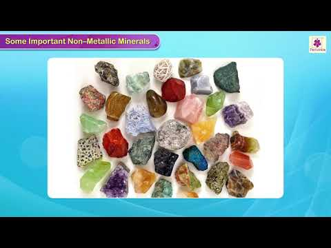 Mineral Resources of India | Social Studies | Grade 4 | Periwinkle