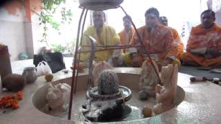 Shiva Rudrabhishek By Curds At Temple With 5 Pandits