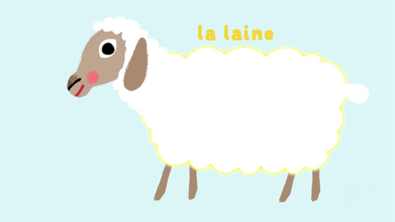 Coloriage La Ferme De Mathurin.Le Mouton Decouvre Les Animaux De La Ferme Avec Pinpin Et Lili