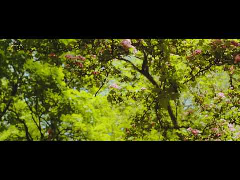 HMD - Baranoid ft. Sleazy F Baby