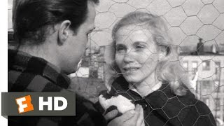 On the Waterfront (3/8) Movie CLIP - Terry Asks Edie Out (1954) HD