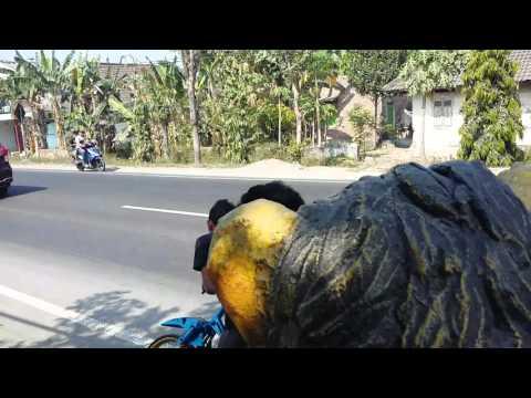 LEMBU SURO 155 cc by BM2 team