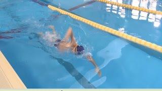 夏、真っ盛り!みなさん、泳いでますかぁ? 水泳で一番早く泳げるのが、...