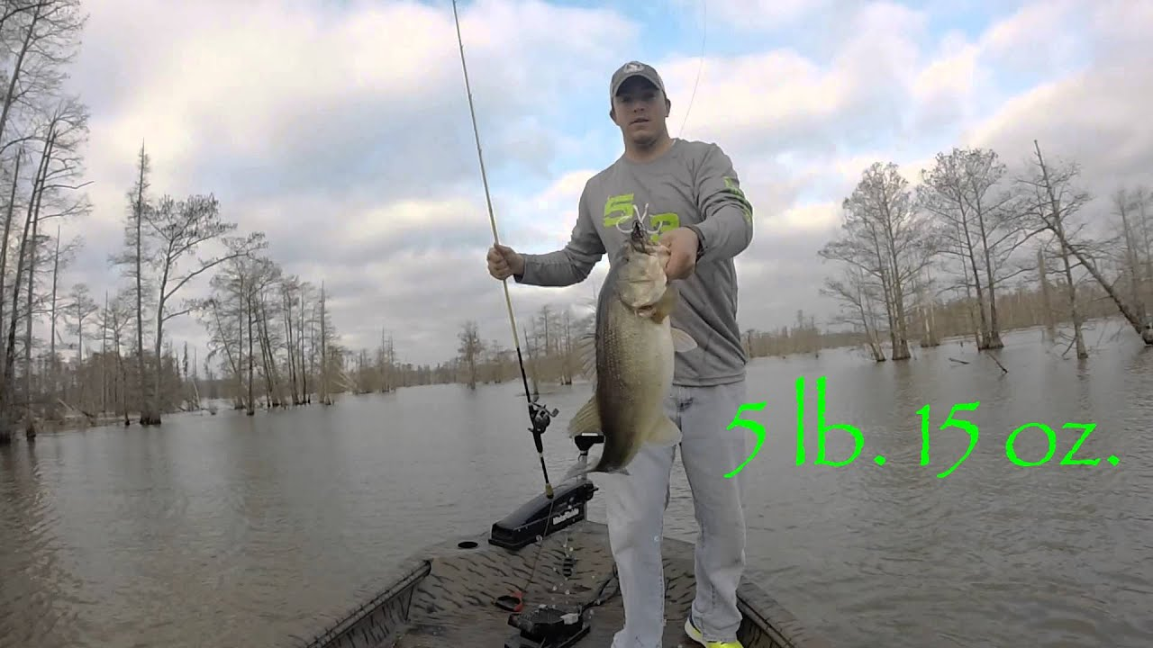 Santee cooper fishing youtube for Santee cooper fishing report