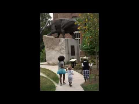 Week 2 - Day 4 Homeschooling | Trip to the Peabody Museum