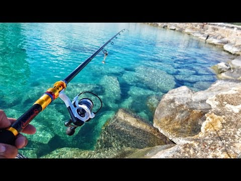 Wish App Ocean Challenge! Wish App Rod And Reel Catches Fish! (ULTRA CLEAR Saltwater!)