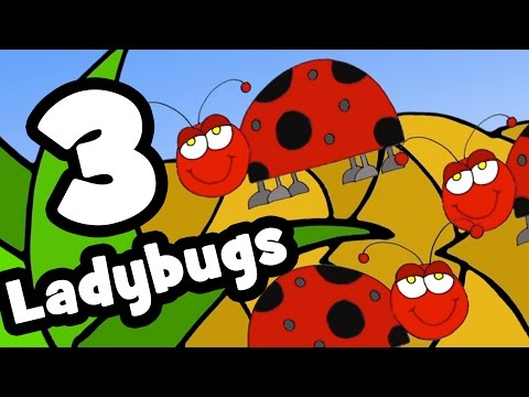 The Ladybug Song  Counting Songs for Kids