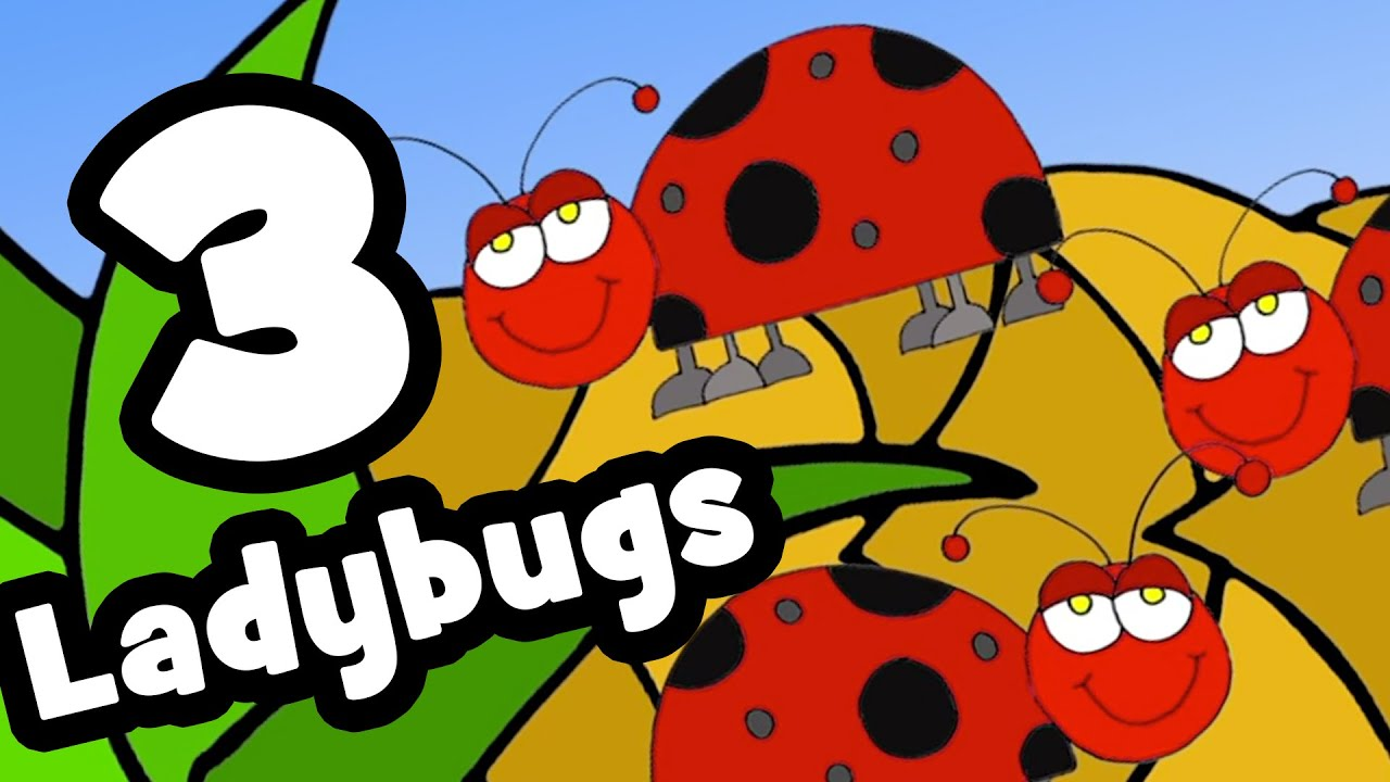 the ladybug song counting songs for kids youtube