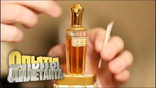 Дегустаторы. Вкусовая и парфюмерная дегустация | Опыты дилетанта