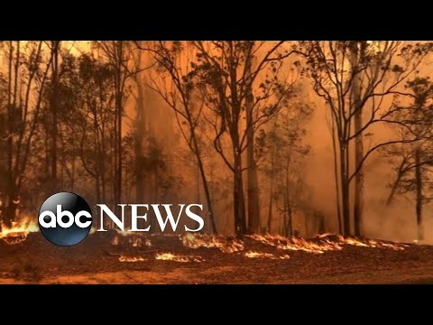 Wildfires rage out of control in Australia, prompting evacuations and rescues | ABC News