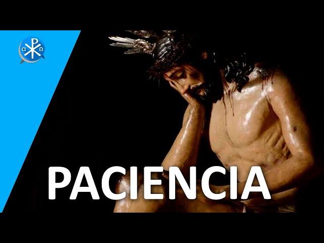 Paciencia   Perseverancia - P. Gustavo Lombardo