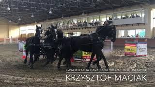 Krzysztof Maciak; Kwalifikacja Cavaliada 2017/18 Bogusławice