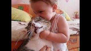 Приколы с котами - Смешные коты и кошки Коты и дети/ FUNNY CAT compilation, Cat with children