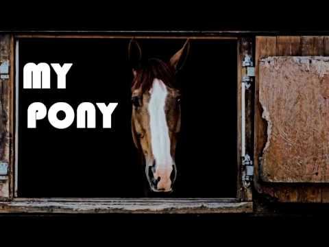 ~ Ride it, my pony, my saddle ~