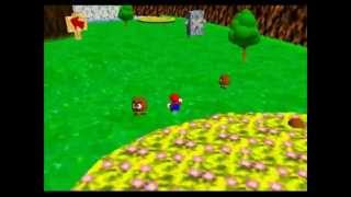Explore Deep Into the Forest - SM64 Green Stars